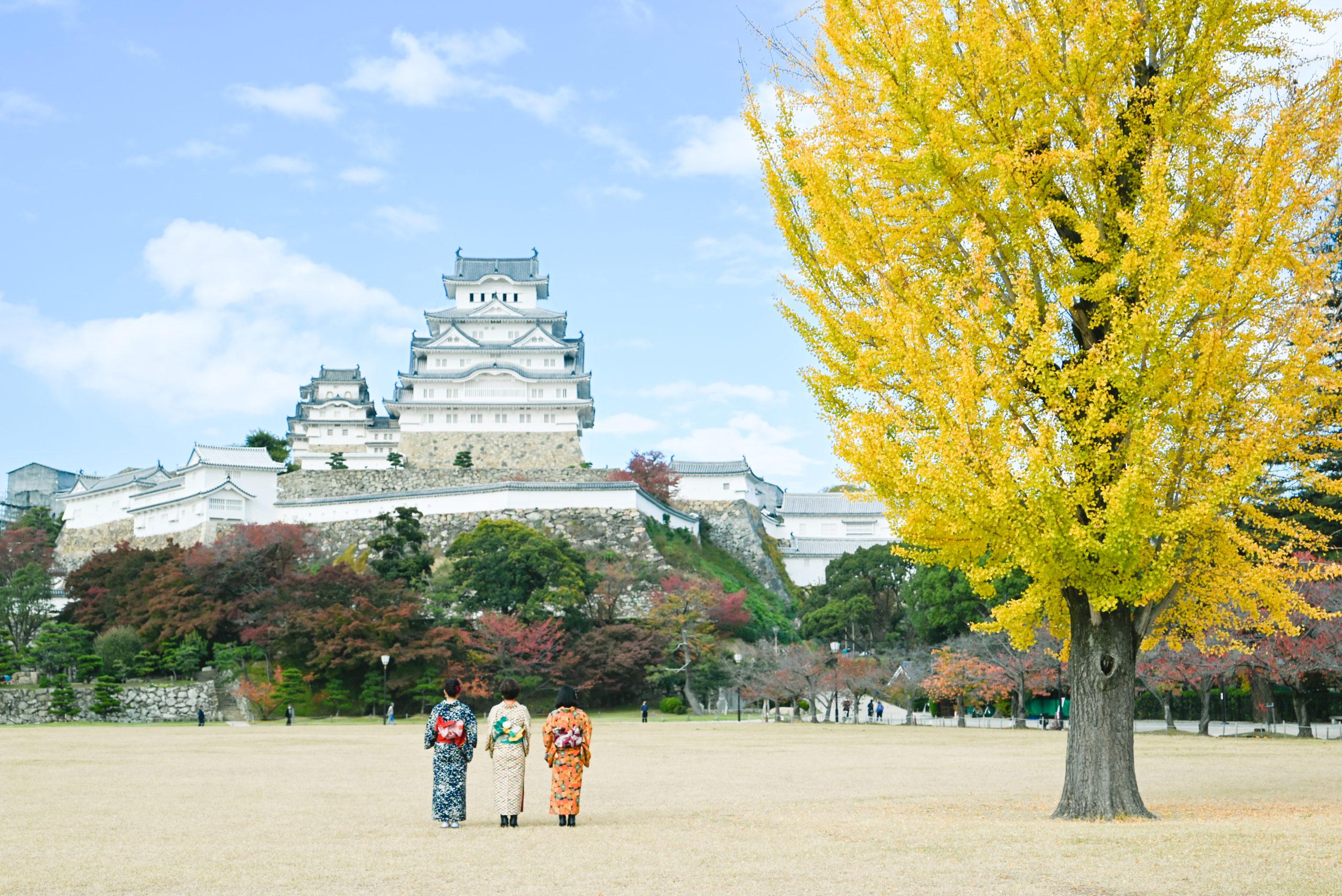 座禅や写経、和菓子作りに絶景巡り!着物で巡る姫路カメラ旅画像