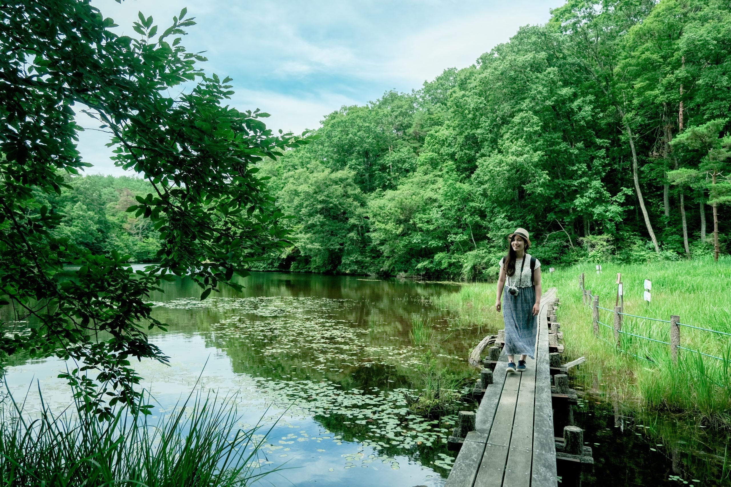 みんなが知らない岡山!「大自然と絶景づくし」の新見市ってどんなところ?画像